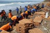 Atasi abrasi pantai, BPBD Cilacap pasang bronjong sabut kelapa