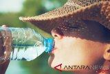 Mikroplastik ditemukan dalam tinja menimbulkan kekhawatiran