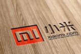 Mint Browser, peramban baru dari Xiaomi