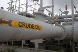 Harga minyak di Asia meningkat tipis, setelah sempat jatuh