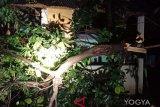 Hujan lebat di Yogyakarta sebabkan kerusakan talud dan rumah