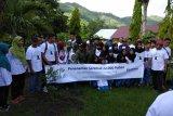 PLN UIP Nusra hijaukan Gunung Sasak Lombok