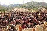 Pemuda Welesi sambut Kapolda Papua dengan senjata tradisional
