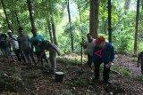 Wakil Bupati Sitaro ajak tanam pohon