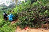 Jalan Agam-Bukittinggi kembali tertimbun material longsoran