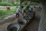 BUMDes berperan tingkatkan ekonomi desa