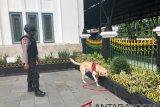 Dua anjing K-9 siap amankan stasiun di Yogyakarta