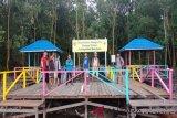Pembangunan ekowisata mangrove Seruyan diharapkan dilanjutkan
