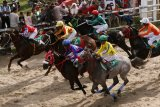 Sempat vakum, alek pacu kuda kembali digelar di Padang Panjang