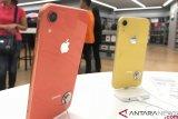 Pecahan kaca bocorkan warna iPhone 2019