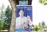 Alat peraga kampanye dipasang di pohon, Bawaslu: langgar aturan