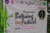 Botuang Festival akan tampilkan seluruh seni budaya Payakumbuh