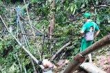 PDAM Jayapura bersihkan pipa sumber air pascahujan deras