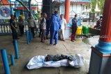 Mayat siswa terjun dari Jembatan Ampera akhirnya ditemukan