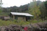 Disdik Jayawijaya identifikasi penyebab 12 sekolah tutup