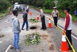 Truk dilarang melintasi jalan Sicincin-Malalak