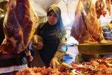 Uji sampel sapi di Yogyakarta negatif antraks