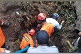 SAR hentikan pencarian korban longsor Wonosobo