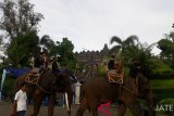 Pengunjung pertama 2019 Candi Borobudur diarak naik gajah