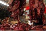 Kebutuhan daging sapi nasional