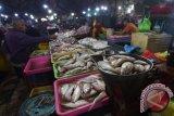 Tingkatkan konsumsi ikan, Jateng distribusikan ikan segar ke daerah pedalaman