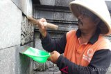 Balai Konservasi Borobudur bersihkan batuan candi dari lumut