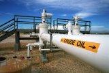 Harga minyak jatuh ke terendah lebih dari setahun karena kekhawatiran virus