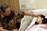 Selebritas sampaikan duka cita kepergian Ani Yudhoyono