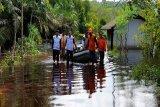 Warga Kotim enggan direlokasi dari daerah langganan banjir