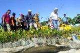 Wagub Sumsel: Wilayah pesisir miliki potensi PAD luar biasa
