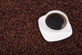 Kurangi risiko kanker usus besar dengan minum kopi