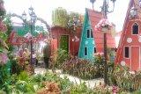 Berwisata penuh warna di Green House Lezatta