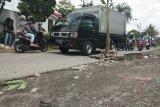 Warga Tamantirto Bantul tanami pohon pisang jalan berlubang