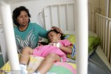 Ibu hamil di Sumba Timur meninggal akibat DBD