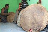 Perajin menata alat musik tradisional rapai Aceh hasil pembuatannya di Industri rumahan Kembar Usaha Desa Leuhan, Johan Pahlawan, Aceh Barat, Aceh, Jumat (15/3/2019). Industri rumahan yang berdiri sejak 1995 tersebut mampu memproduksi rapai sebanyak tiga sampai sembilan unit rapai per hari dengan harga jual berkisar antara Rp350.000 sampai Rp2,000,000 per unit tergantung ukur dan jenis rapai. (Antara Aceh/Syifa Yulinnas)