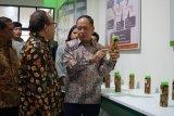 Menristekdikti tinjau Gallery Perkebunan yang dikembangkan Instiper Yogyakarta