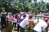Gebyar Peternakan 2019, Pesisir Selatan siap kembangkan itik lokal