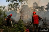 Lomba karya jurnalistik PWI Riau-KLHK berhadiah Rp115 Juta