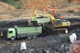 Indonesia perlu transisi energi terkait batu bara