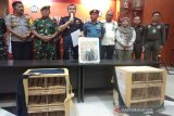 IAR Indonesia : Vonis perdagangan satwa di Dumai perlu dicontoh
