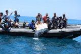 Patroli gabungan TNI dan Polri gagalkan penyelundup benih lobster di perairan Nipah