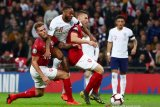 Inggris hajar Republik Ceko di pertandingan kualifikasi Eropa