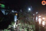 Angin kencang sebabkan satu tewas dan lukai sejumlah orang di Kota Batu