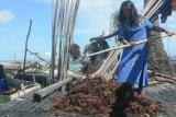 Investor asal Jatim bakal bangun pabrik pengolahan rumput laut di Nunukan