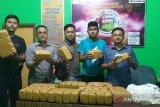 Polisi tangkap sepasang kekasih bawa ganja kering 40 Kg