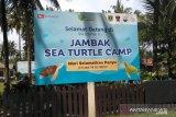 The Initiative Of The Jambak Sand Community To Make Turtles