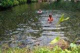 Sensasi pemandian alami di Lampung Timur
