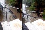 Buaya datang karena bangkai binatang dibuang ke aliran sungai