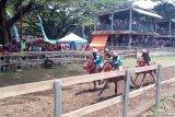 Joki-joki cilik adu kebolehan di Festival Pesona Tambora