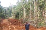 Gairah berdemokrasi dari Lembah Lalomerui